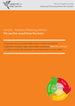 Greyfly---How-To-Create-A-Winning-Business-Plan-247x350