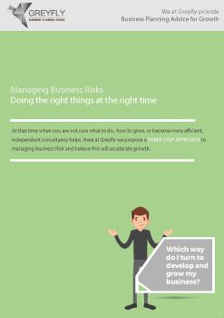 Greyfly---Managing-Business-Risks-247x350