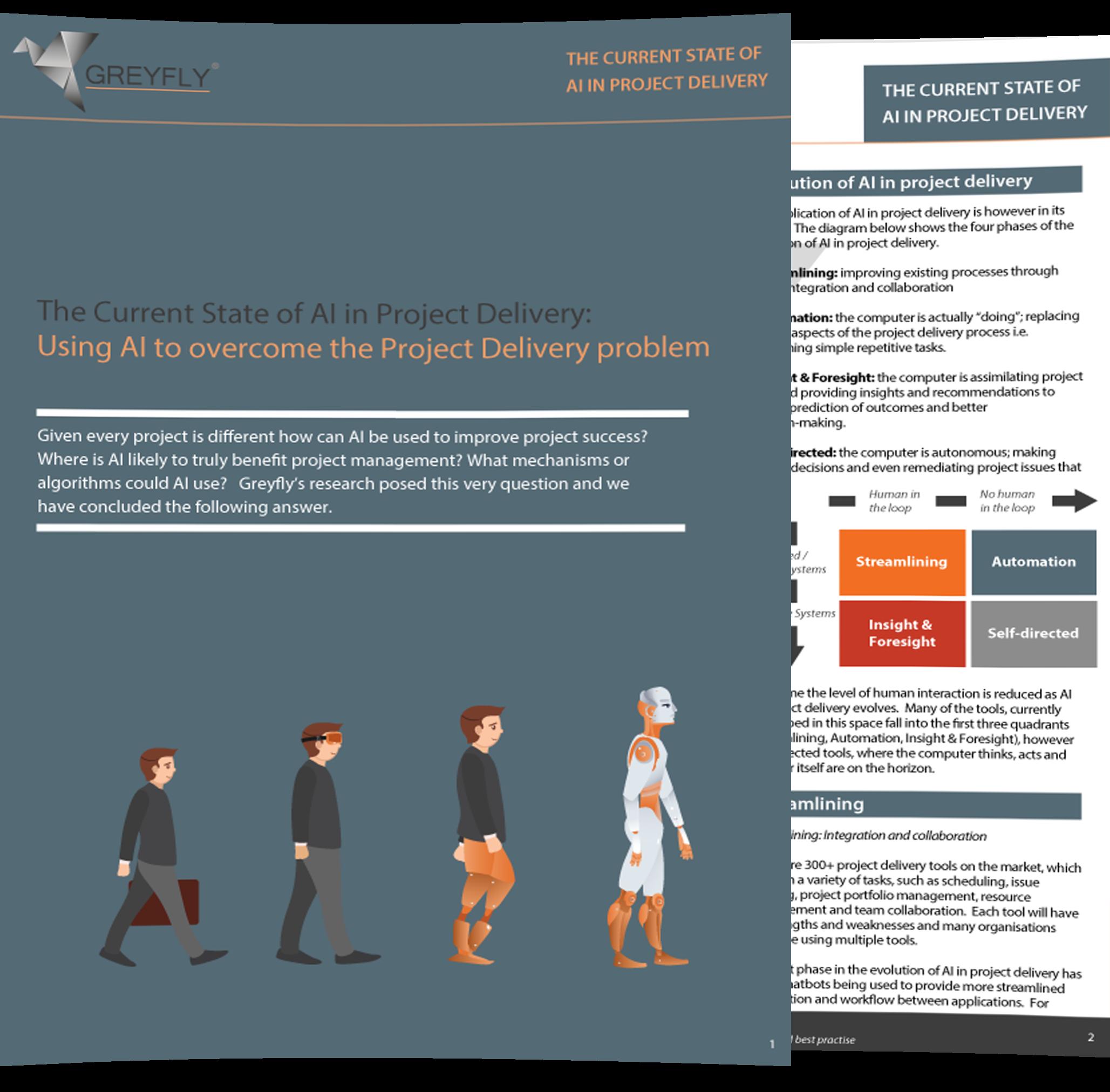 AI PM Problem Brochure